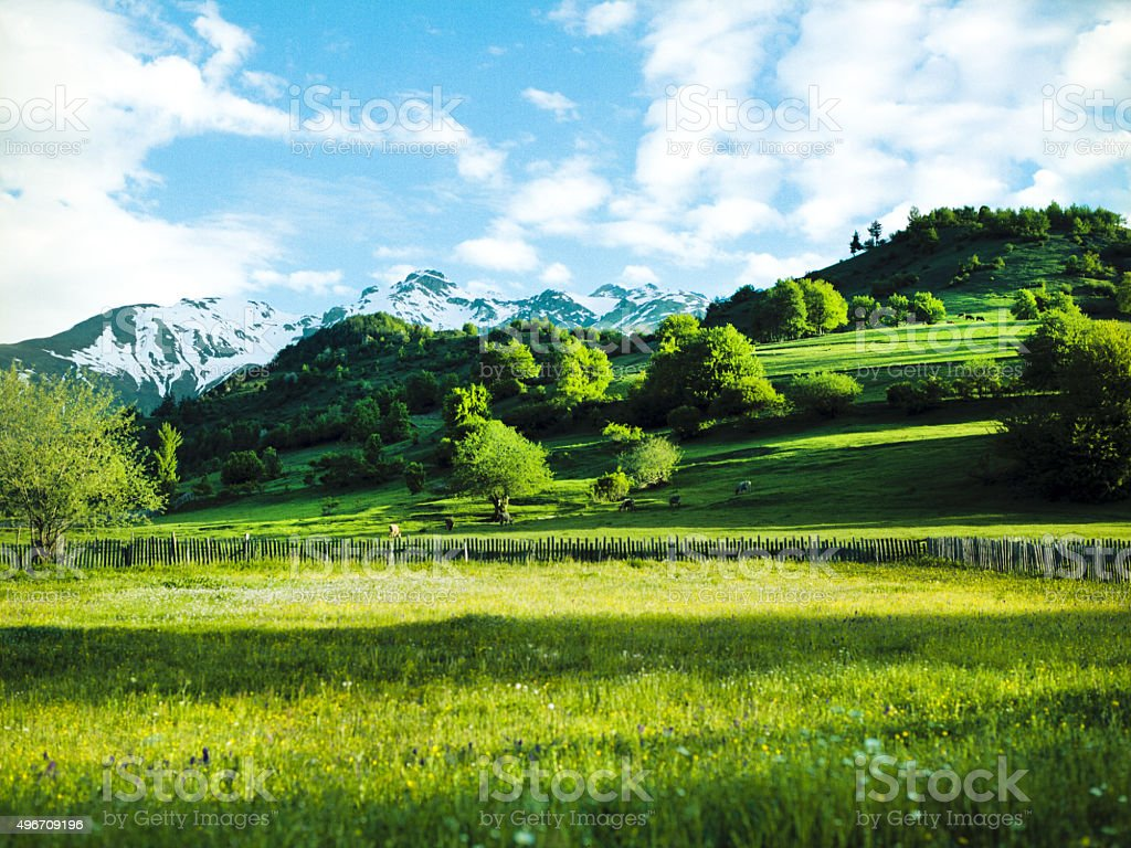 Green valley in Cauvasus mountains stock photo