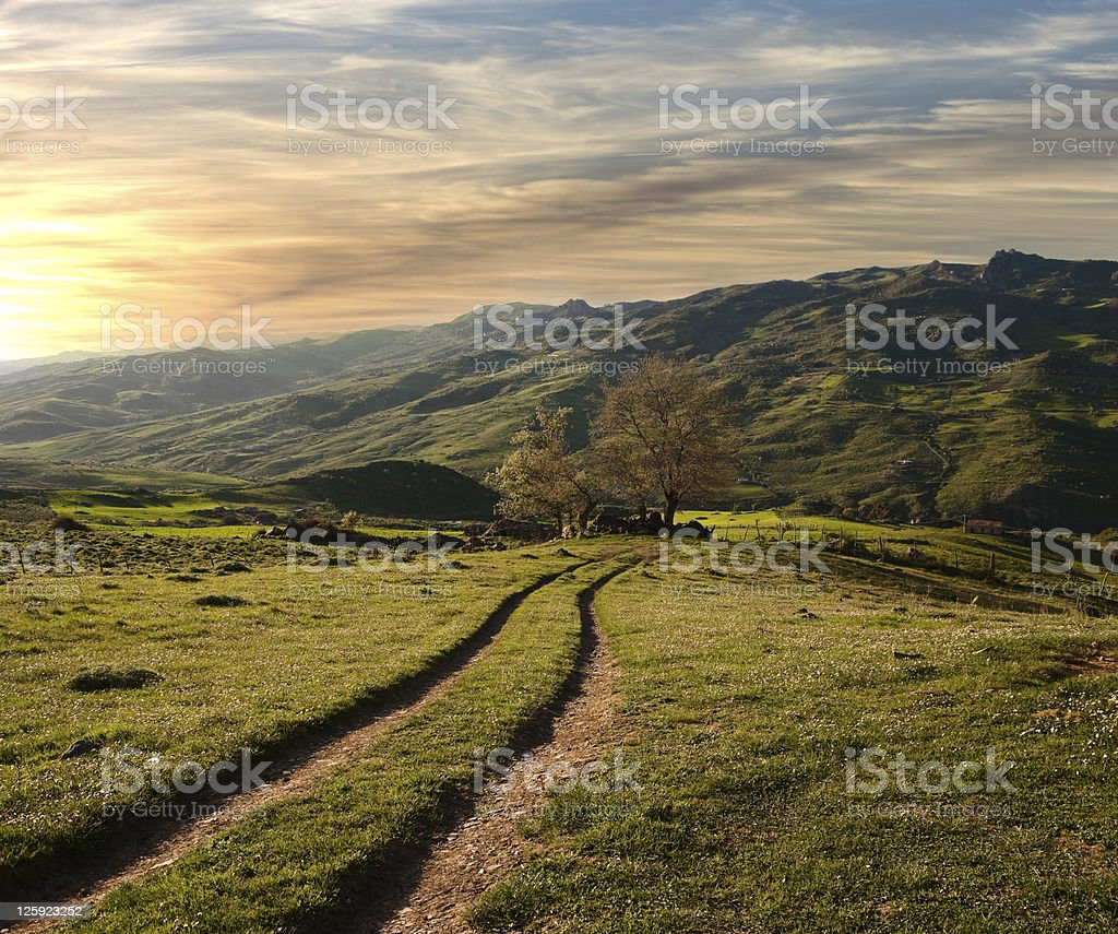 Green Valley In The Sunset royalty-free stock photo