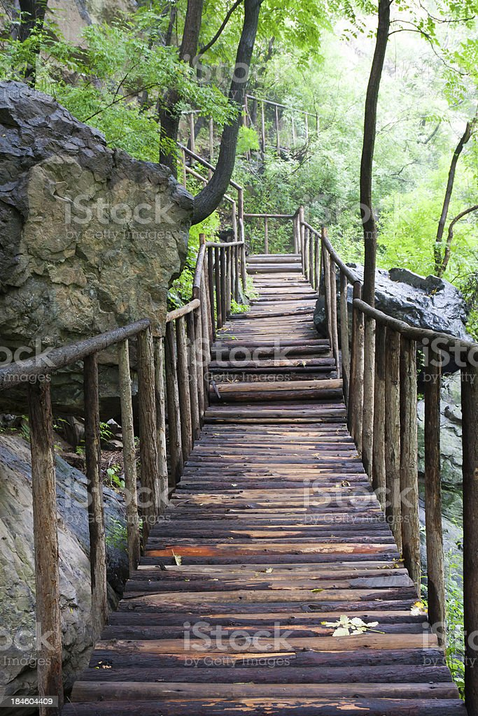 Green valley of the wood bridge royalty-free stock photo