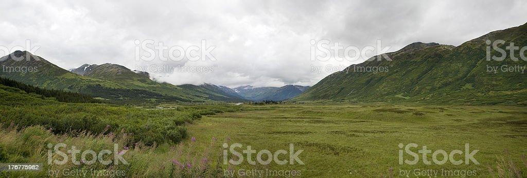Green valley on Kenai Peninsula, Alaska stock photo