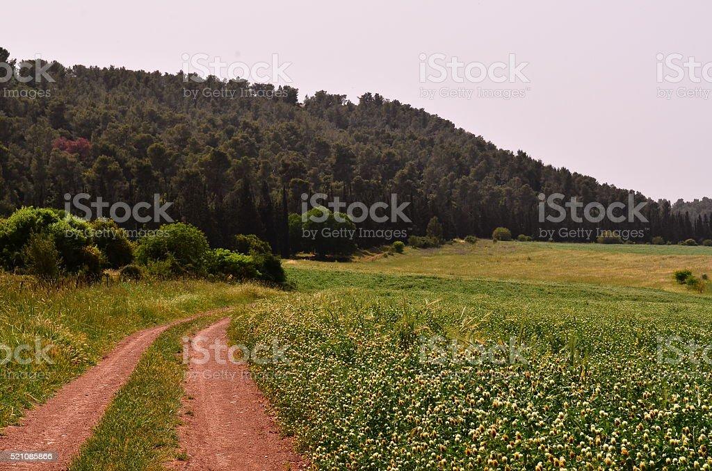 green valley foto de stock libre de derechos