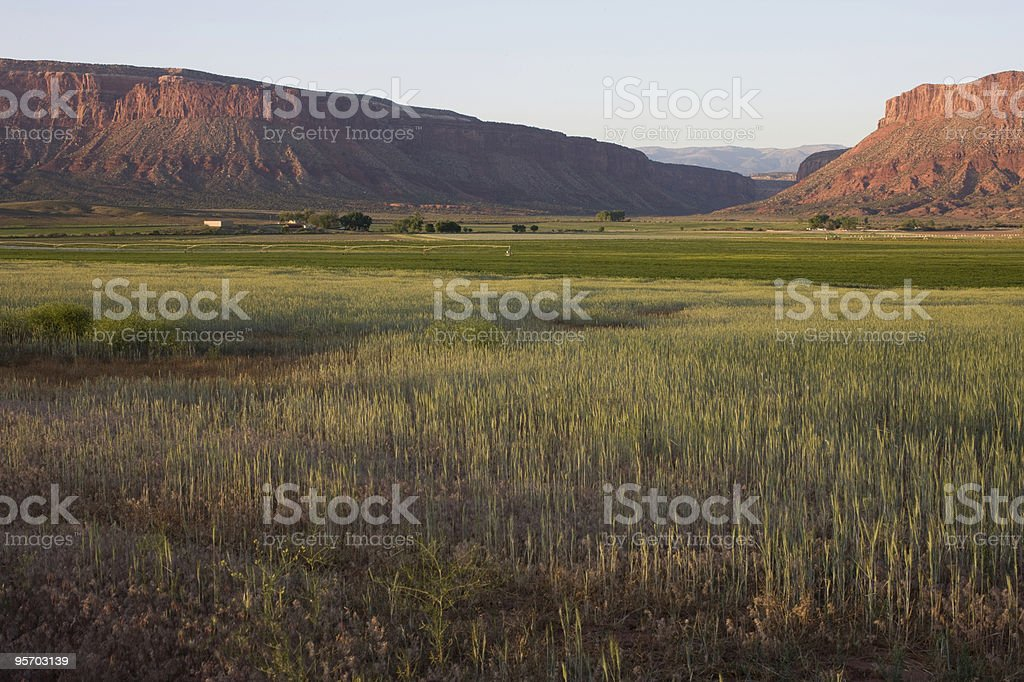 Green valley surrounded by sandstone bluffs stock photo