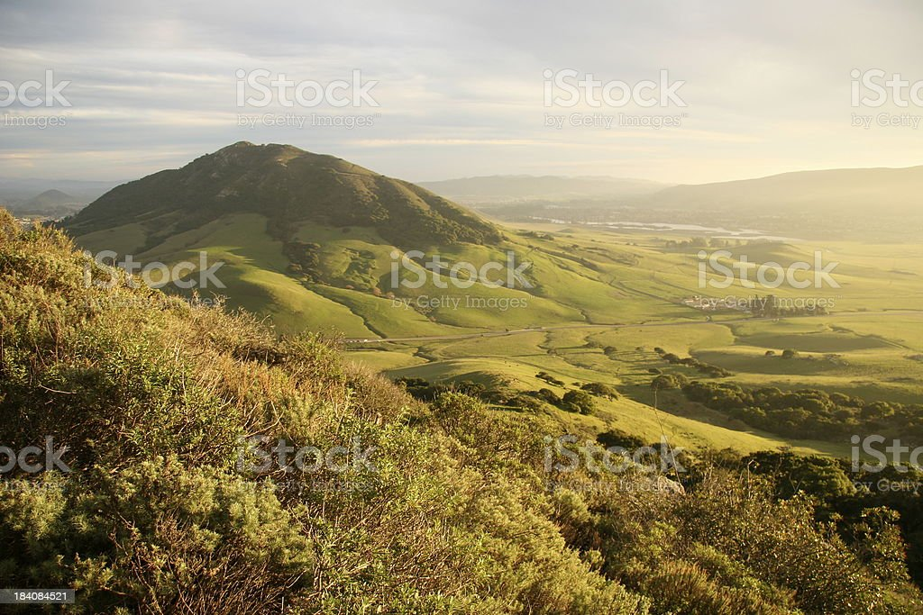 Green valley with mountain stock photo