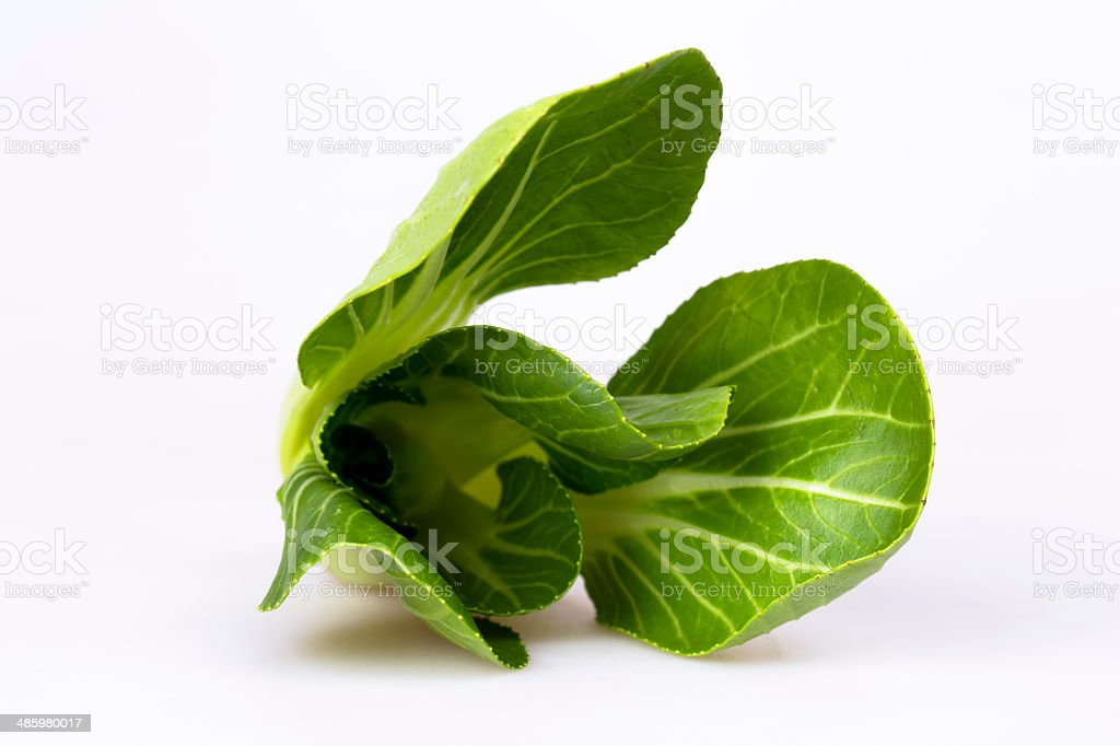 green vegetable royalty-free stock photo