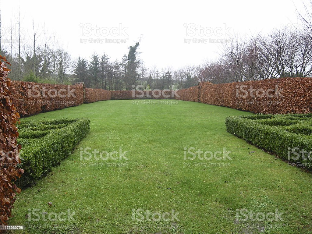 Green Wall Garden royalty-free stock photo