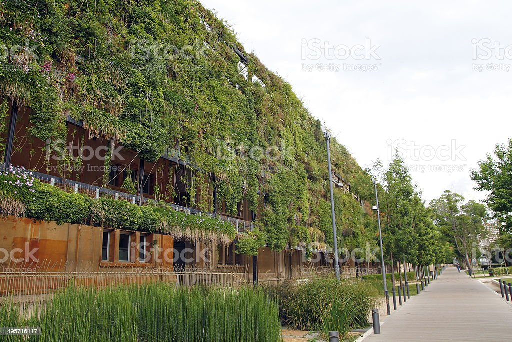 Green wall in an ecological building stock photo