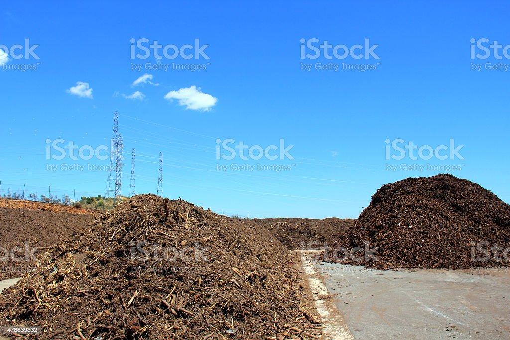 Green waste stock photo