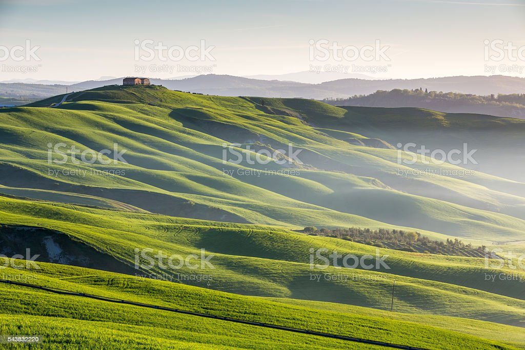 Green waves in Tuscany stock photo