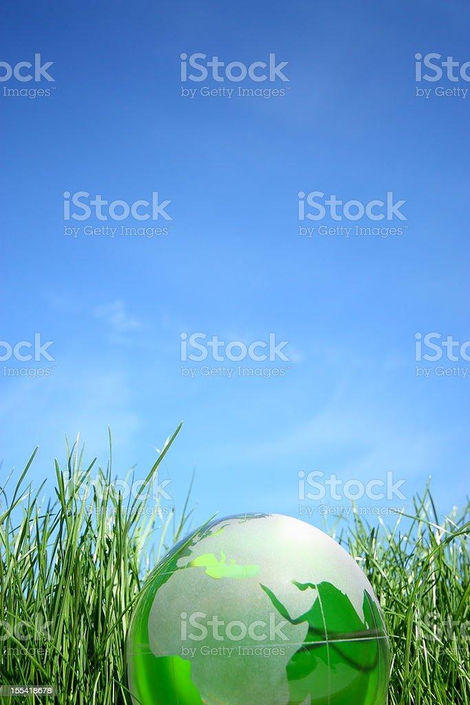 World globe on the green grass.
