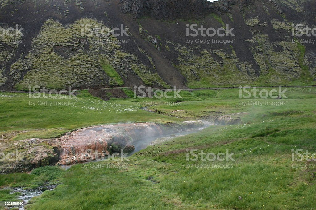 Greenery in the land of hot springs (1) Iceland. stock photo
