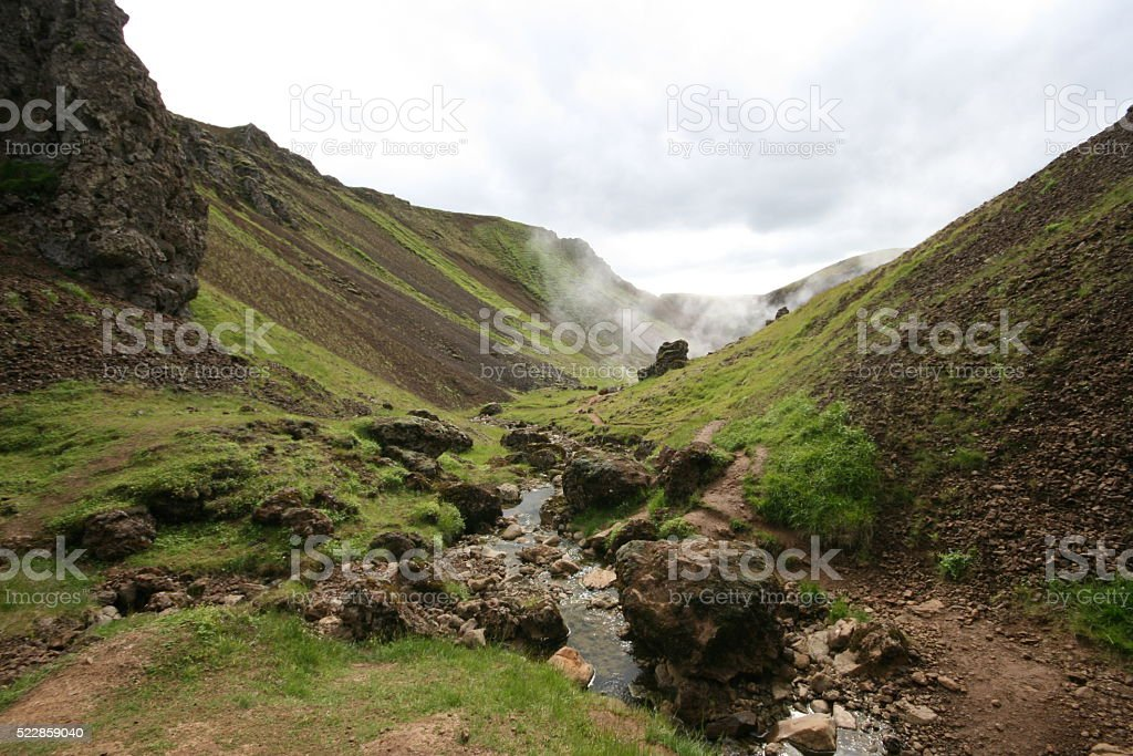 Greenery in the land of hot springs (2) Iceland. stock photo