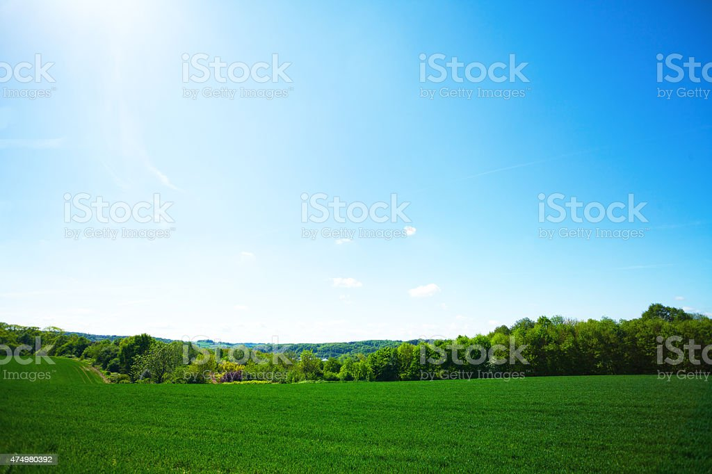 Greenery of valley Ruhr in western Ruhrgebiet stock photo