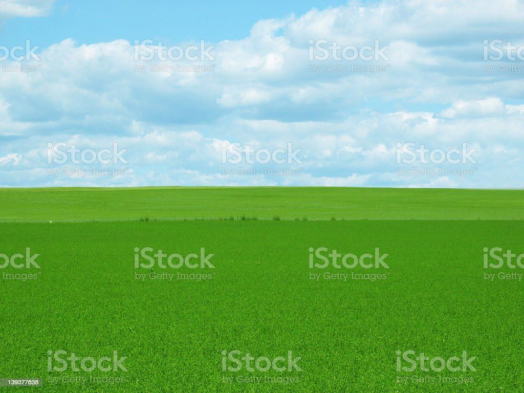 Greenfield-Empty royalty-free stock photo