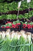 Greengrocer