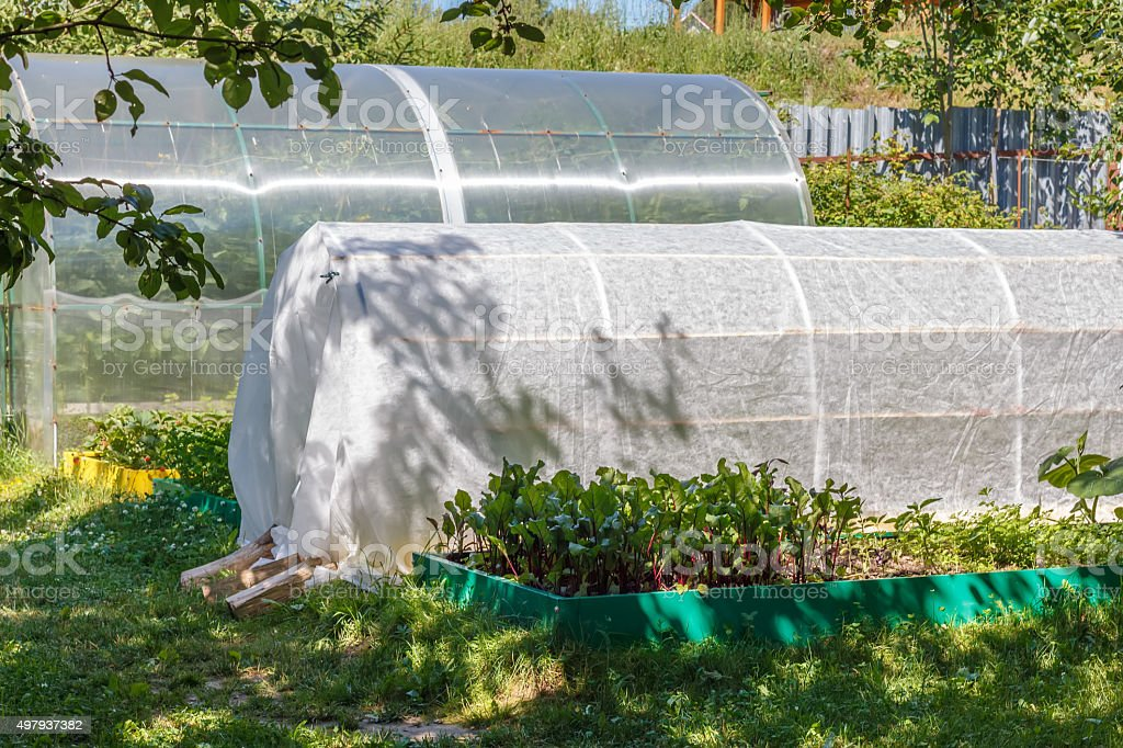 Greenhouse, cold frame and  seedbed. stock photo