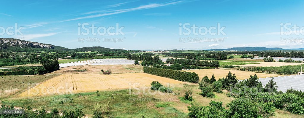 Greenhouse Cultivation royalty-free stock photo