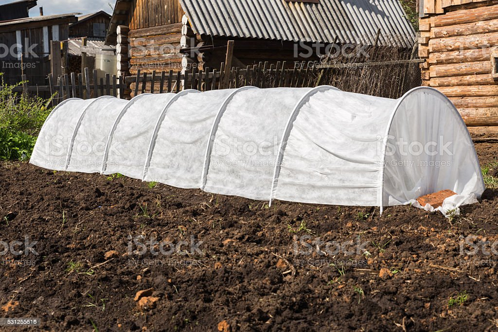 greenhouse for cucumbers stock photo