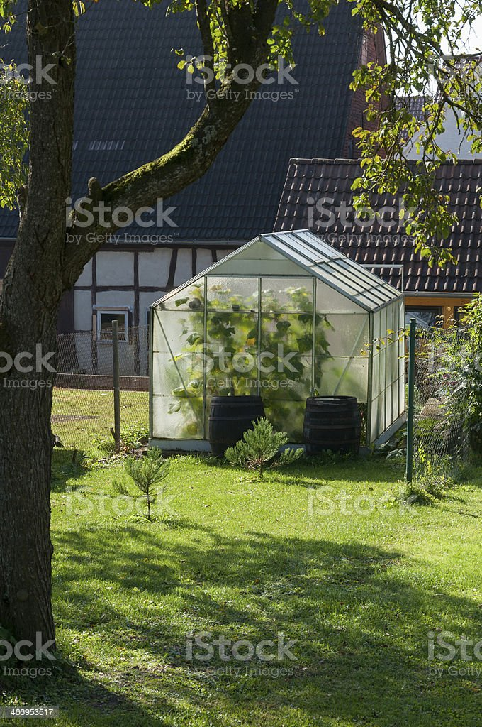 Greenhouse in the back garden, Germany stock photo