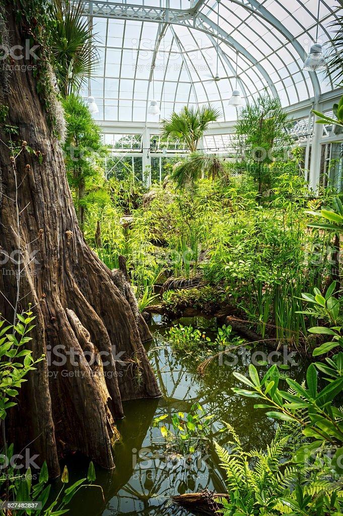 Greenhouse Interior stock photo