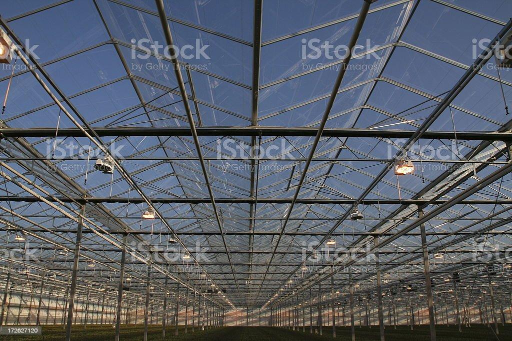 Greenhouse # 1 royalty-free stock photo