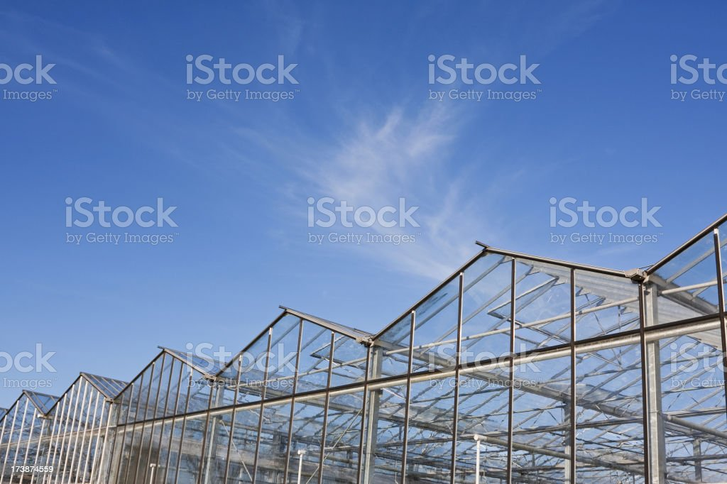 Greenhouse # 10 royalty-free stock photo