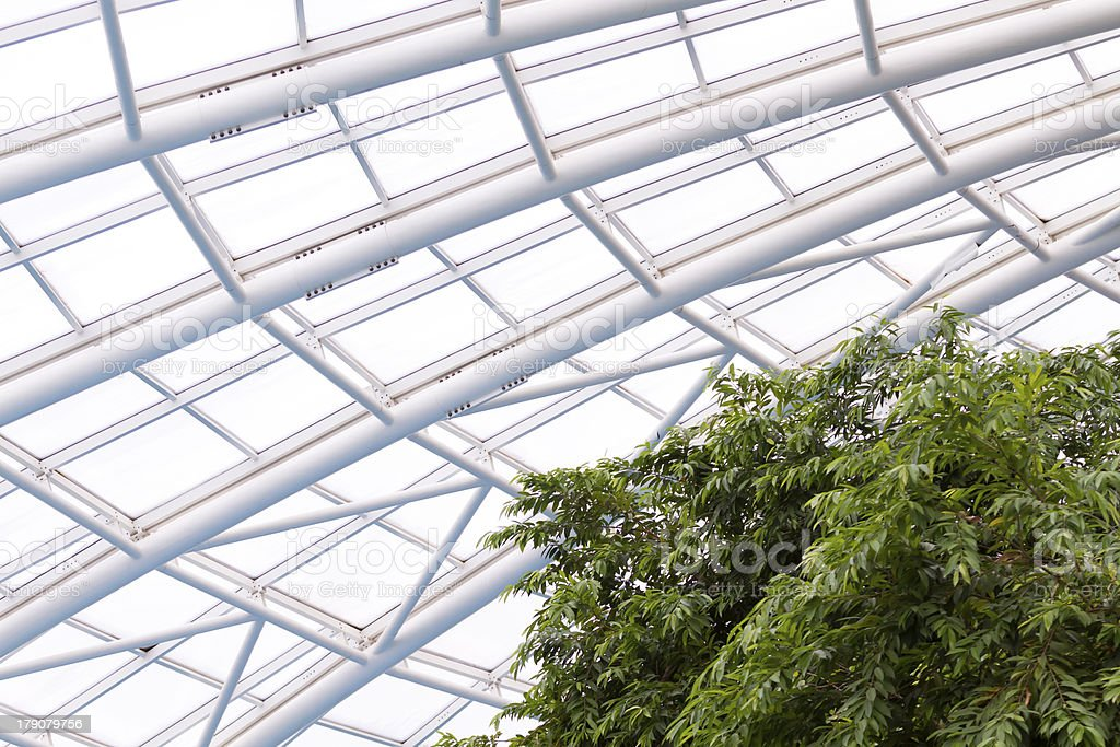 Greenhouse royalty-free stock photo