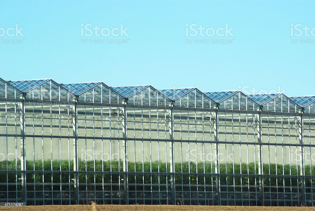 Greenhouse Range royalty-free stock photo