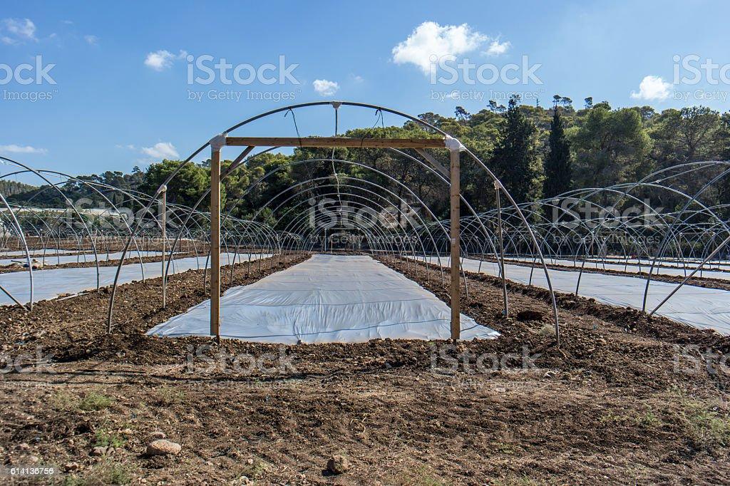 Greenhouse under construction stock photo