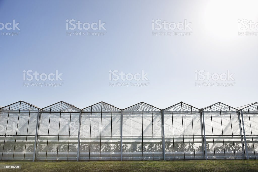 Greenhouses against blue sky royalty-free stock photo