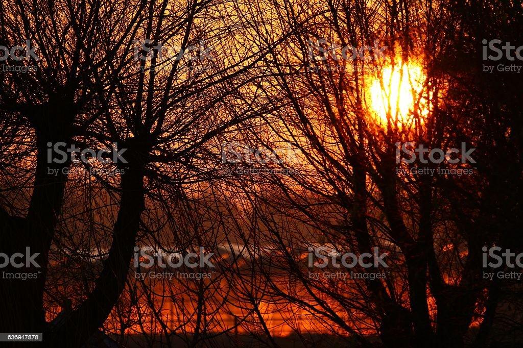 Greenhouses catching winter sun lights stock photo