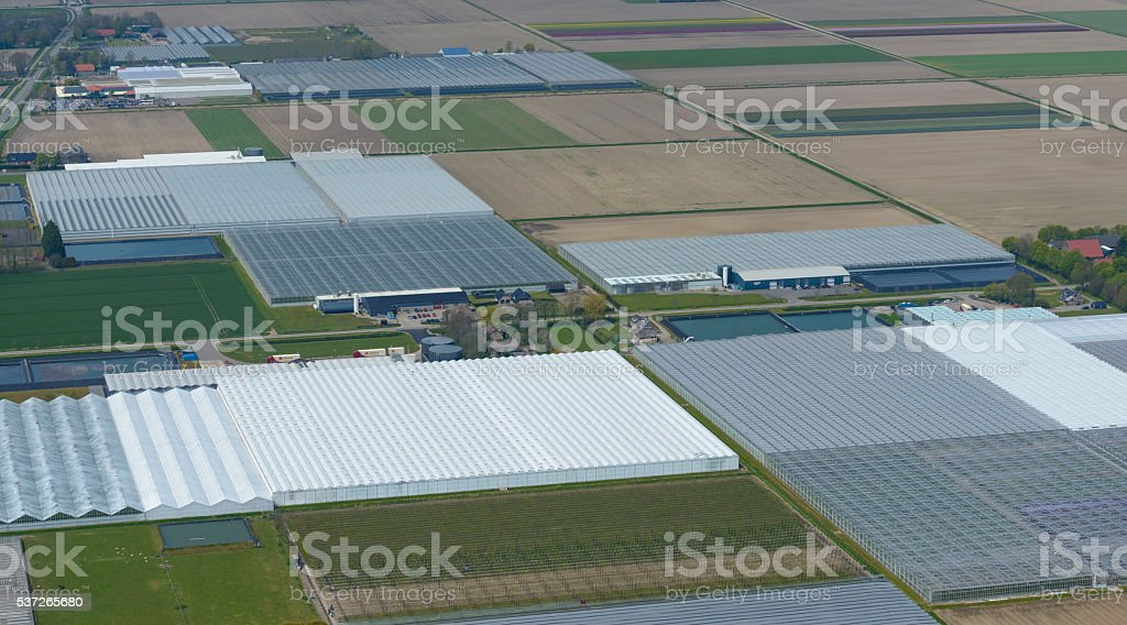 Greenhouses in a row seen from above stock photo