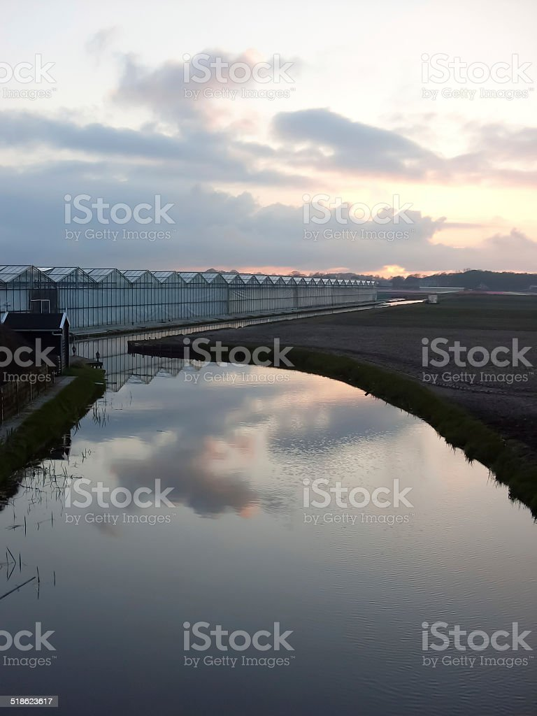 Greenhouses in the flower area in Holland royalty-free stock photo