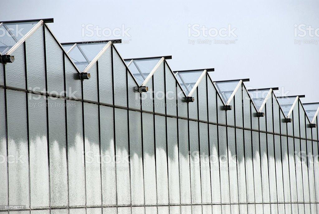 Greenhouses royalty-free stock photo