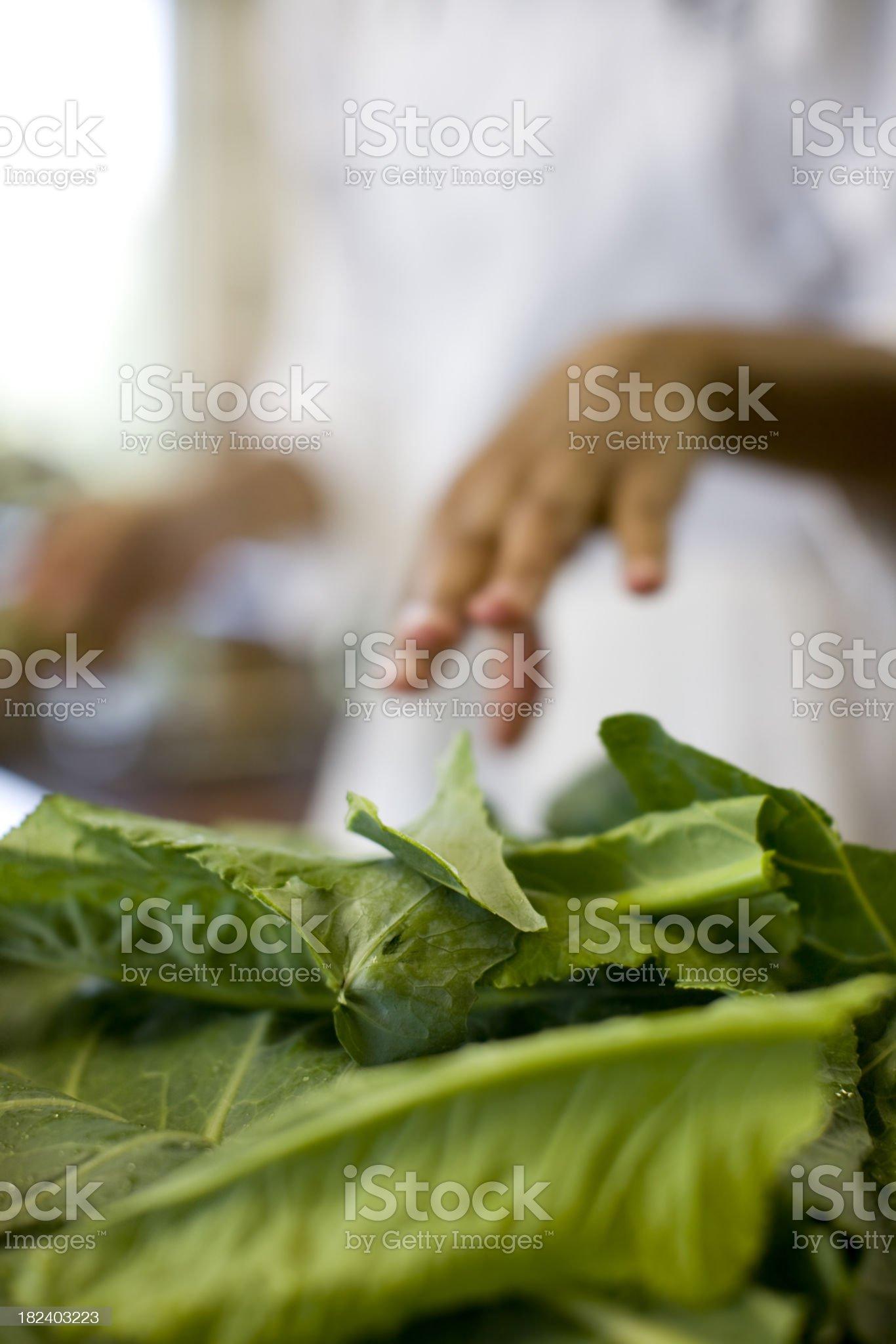 Greens royalty-free stock photo