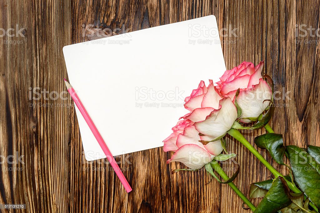 Greeting card. Roses with pink pencil and blank card stock photo