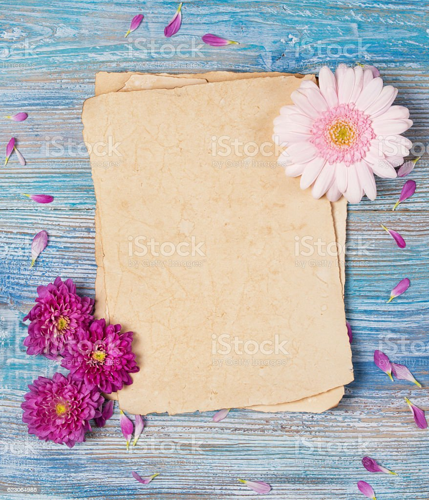 Greeting card with old blank paper sheet and pink flowers stock photo