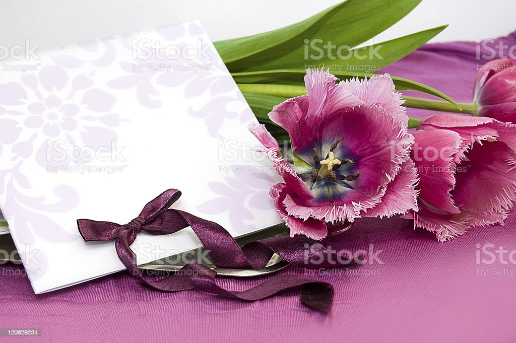 Greeting card with violet tulips royalty-free stock photo