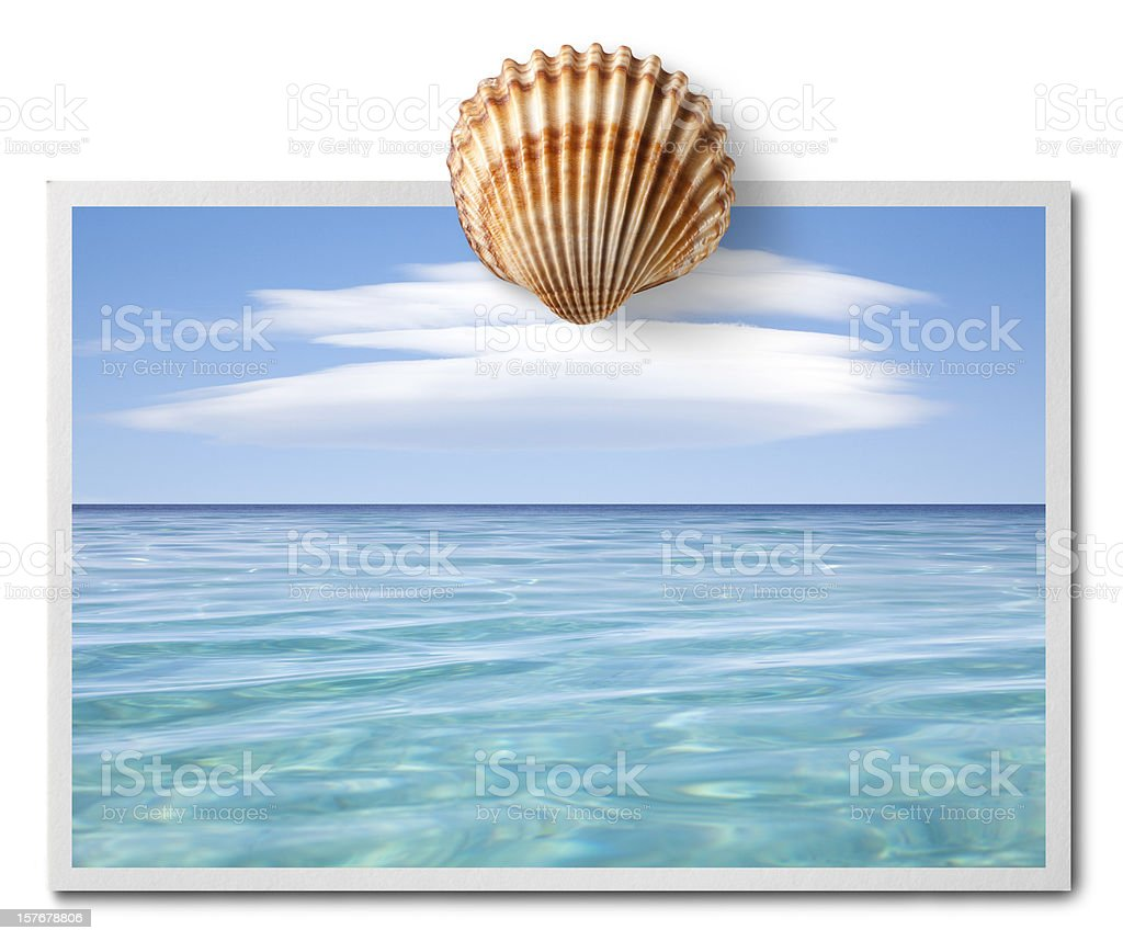 Greetings from the sea. Postcard with shell. royalty-free stock photo