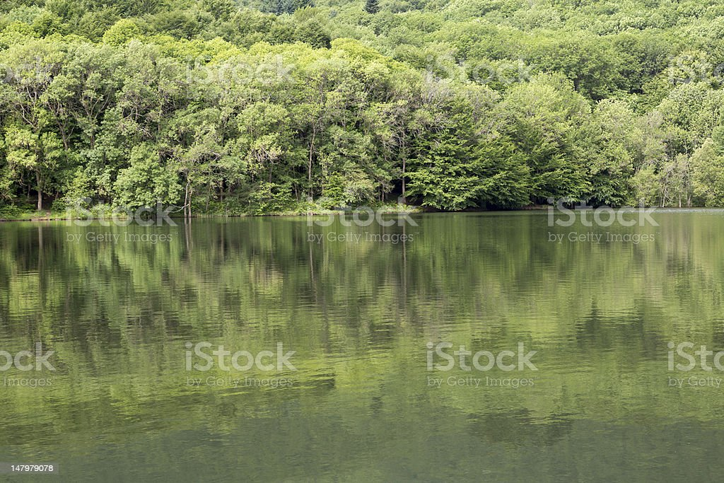 Gren and green royalty-free stock photo