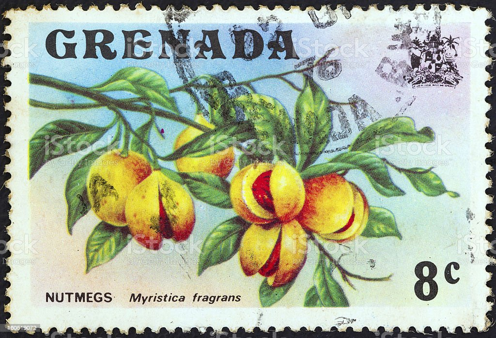 Grenadian stamp shows nutmeg branch (Myristica fragrans) (1974) royalty-free stock photo