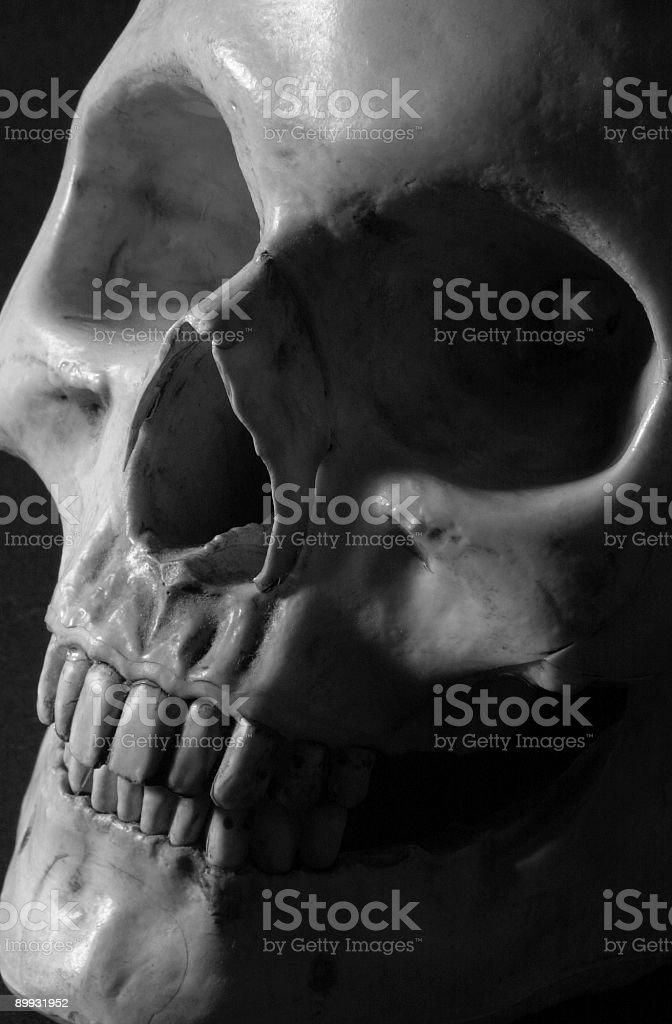 Grey Death royalty-free stock photo