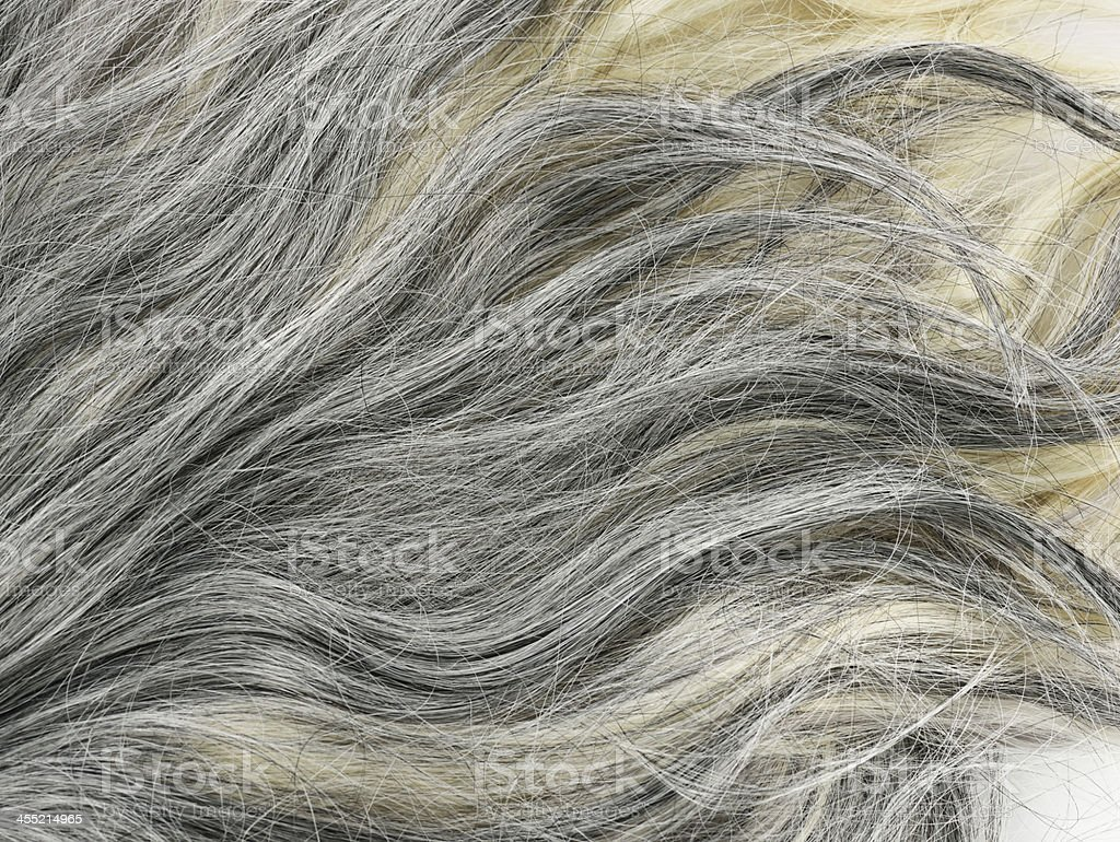 Grey  Hair Background stock photo