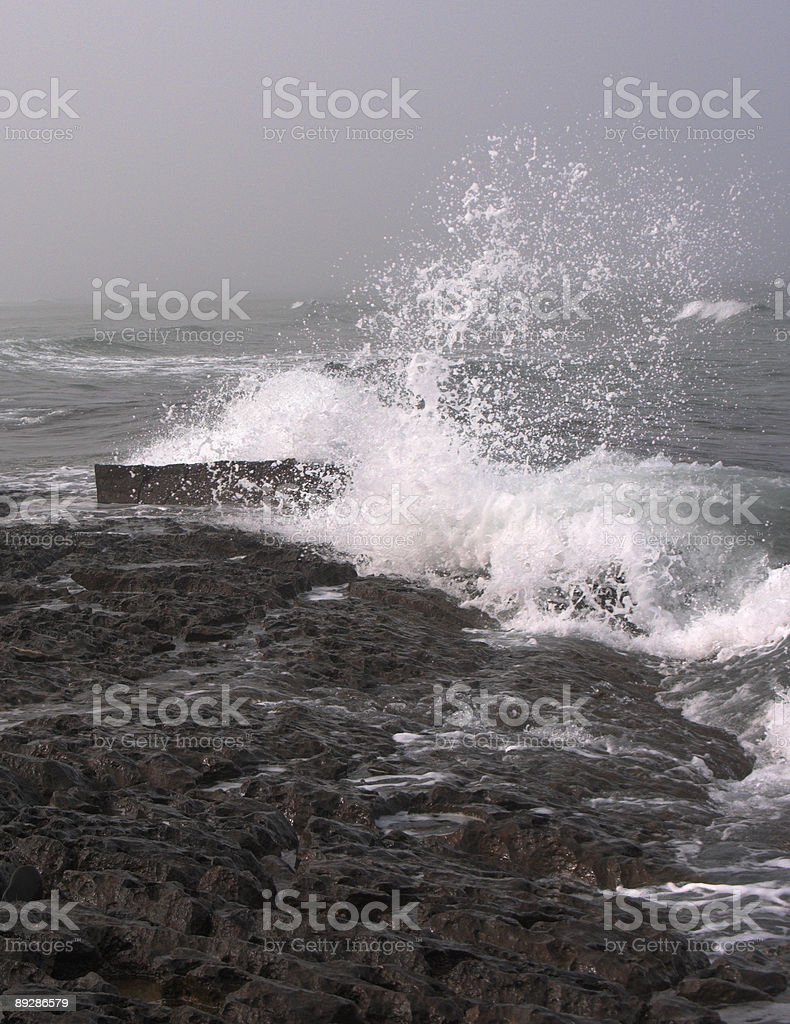Grey Winter Storm royalty-free stock photo