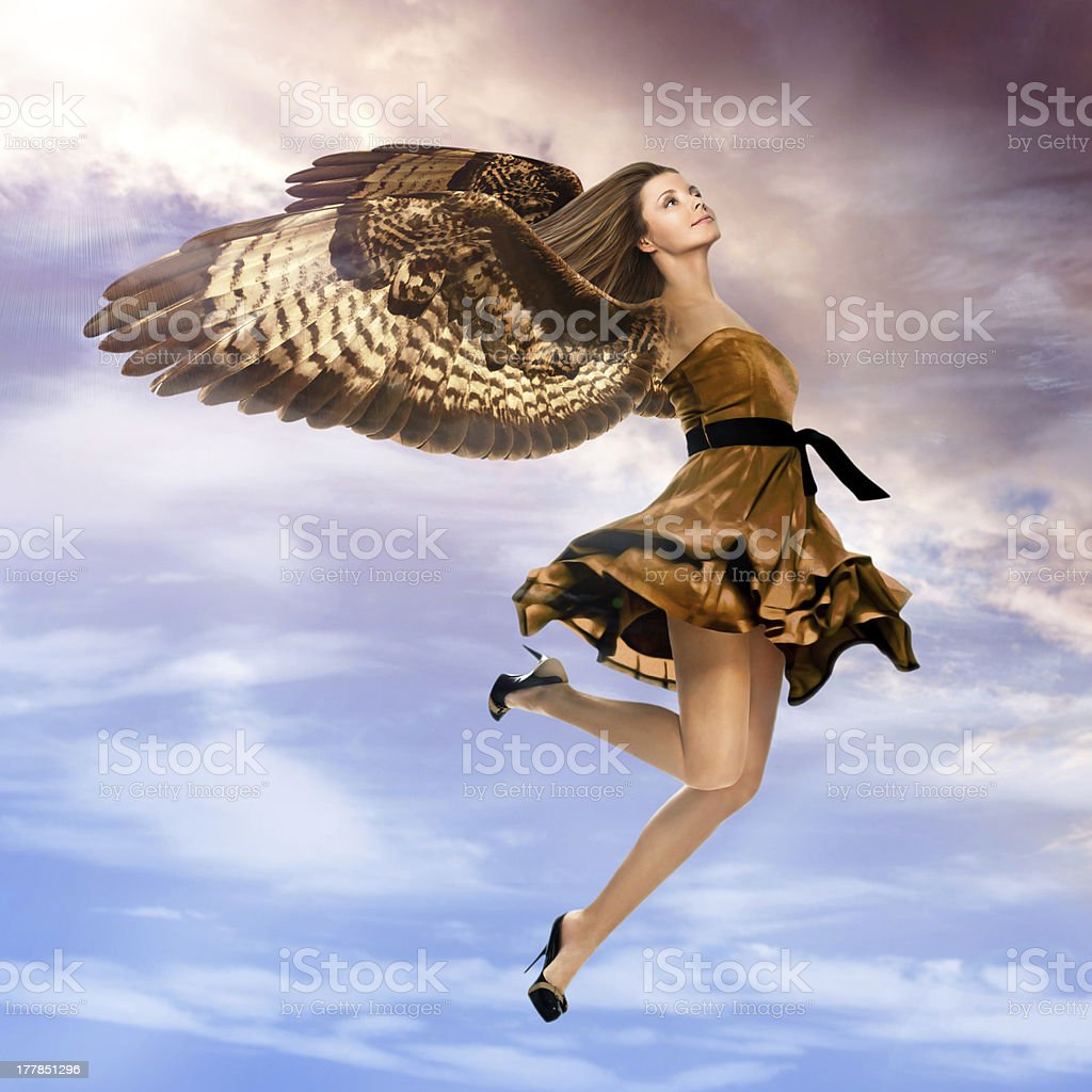 Griffin girl flying in the sky stock photo