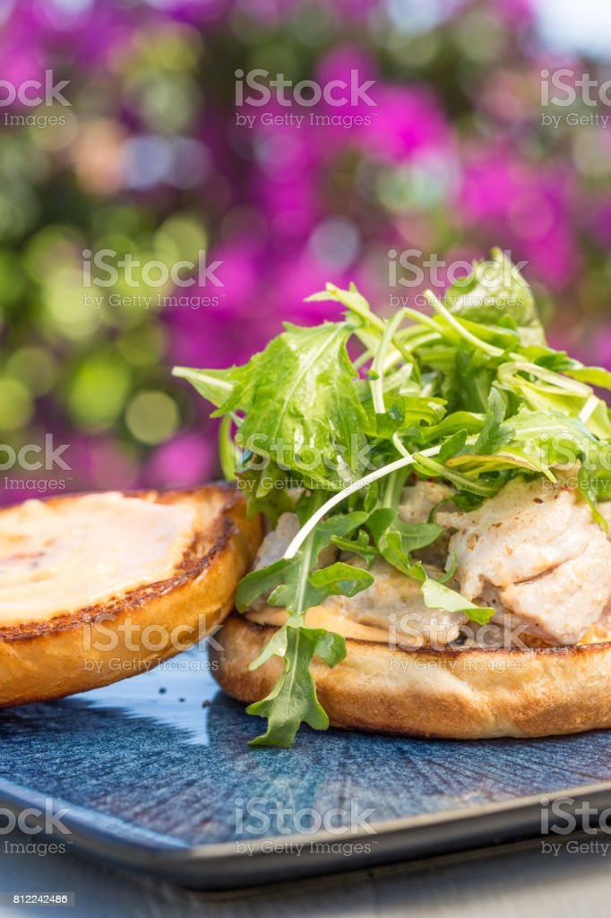 Grilled Ahi Sandwich stock photo