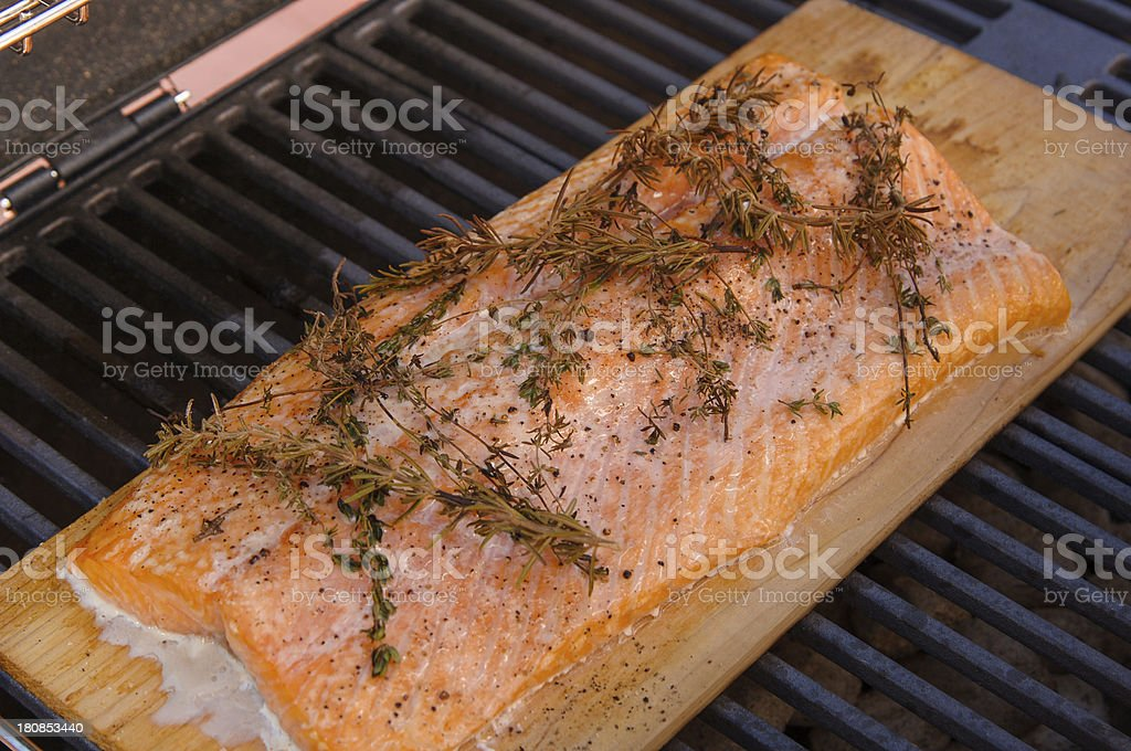 grilled cedar plank salmon stock photo