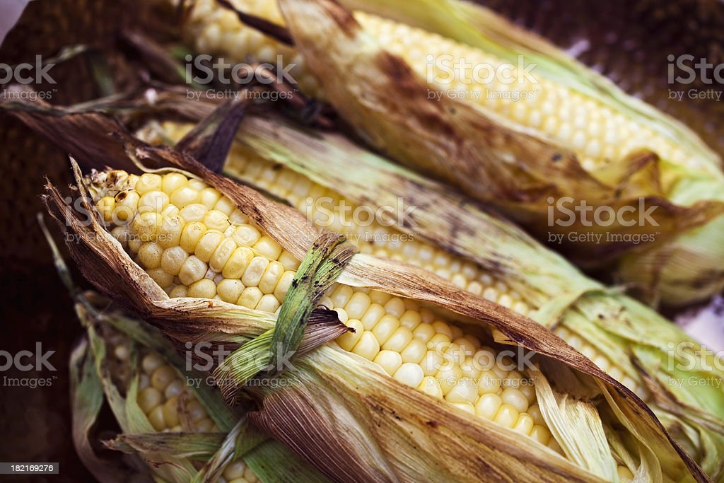 Grilled Corn on the cob. royalty-free stock photo