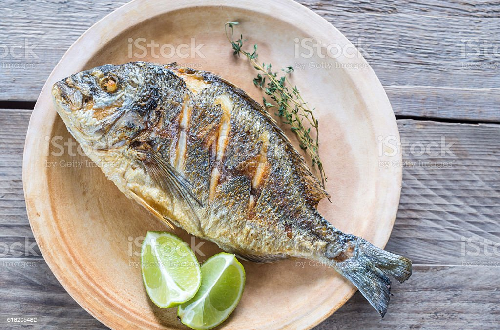 Grilled Dorade Royale Fish on the plate stock photo