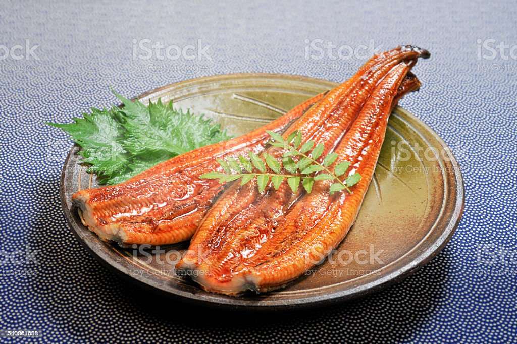 Grilled eel stock photo
