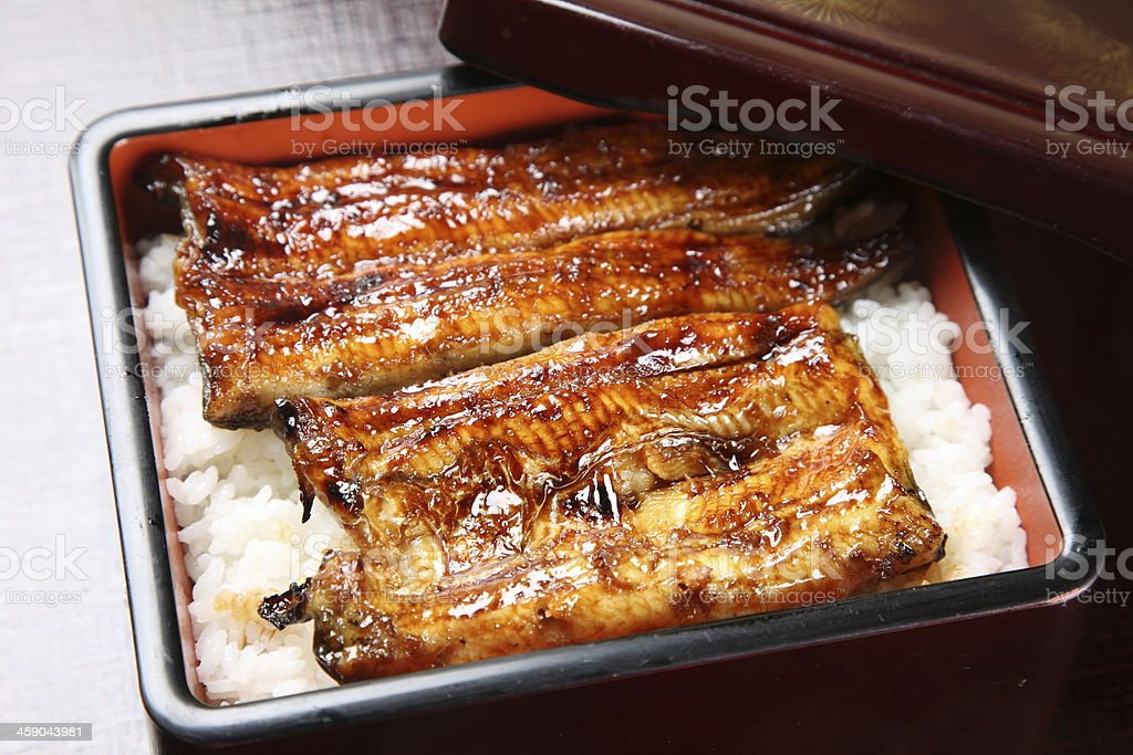 Grilled eels in a bed of white rice stock photo